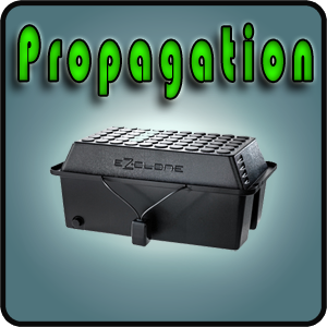 Propagation Category
